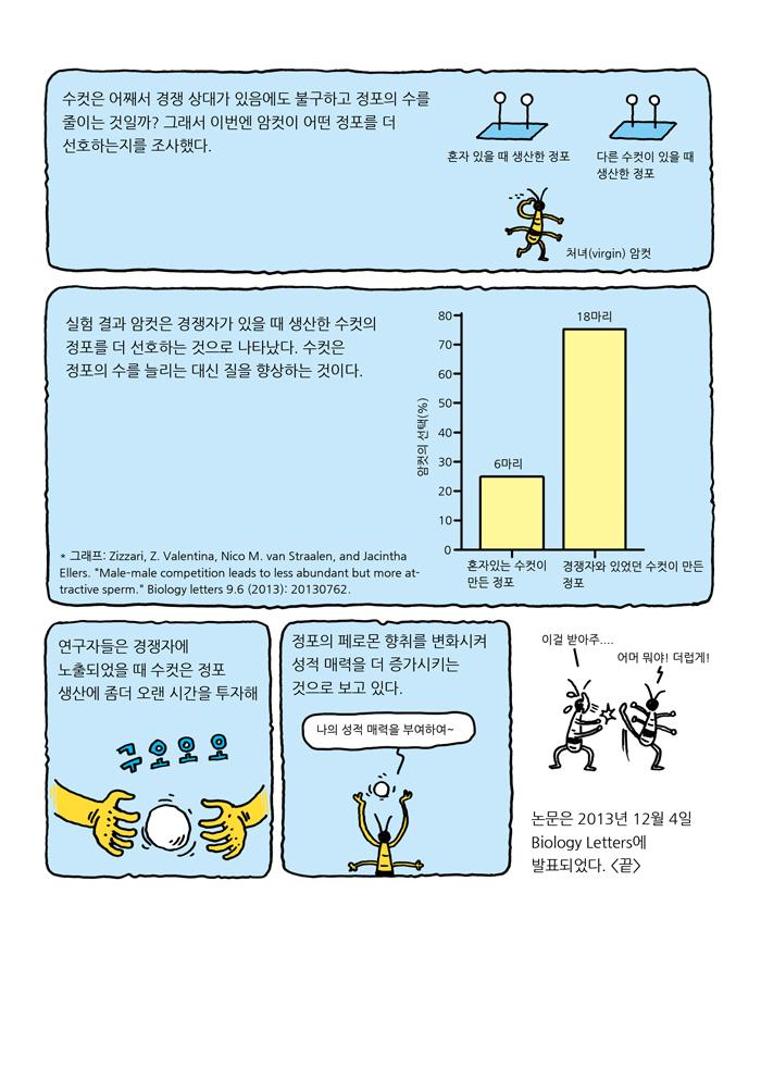 news-06-springtail-07-web.jpg
