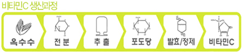 비타민C 생산과정.jpg