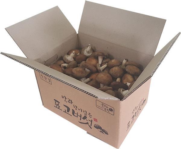 버섯 박스.jpg